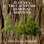 Augusta Tree & Stump Removal Services Logo